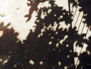 joreggelt17.jpg