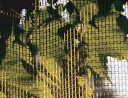 joreggelt8.jpg