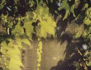 joreggelt9.jpg
