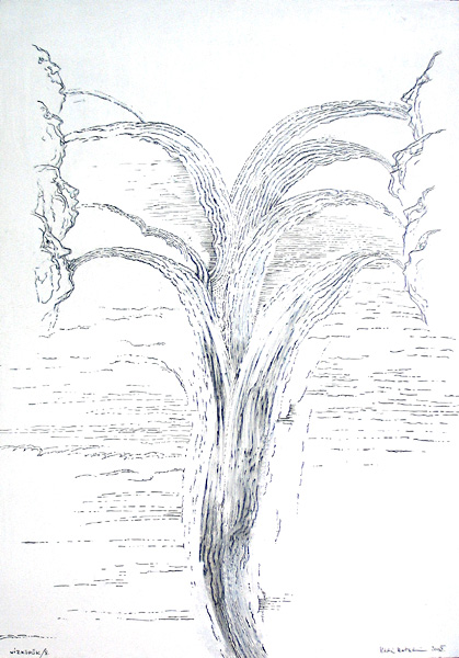 vizkopok8.jpg