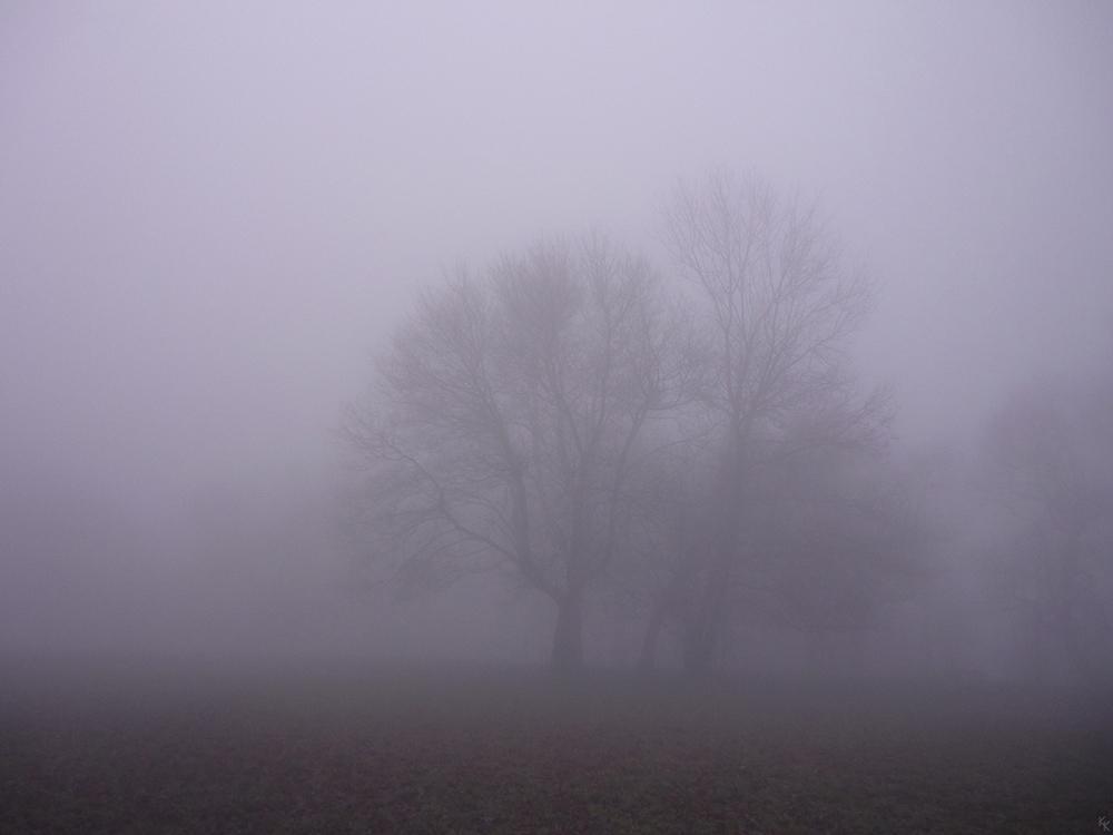 ködös 1
