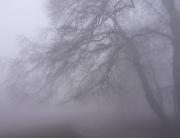 ködös 2