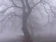 ködös 3